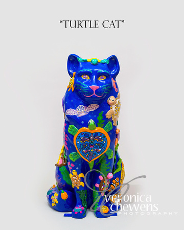 #1 HOCA Cats 2015-Turtle Cat