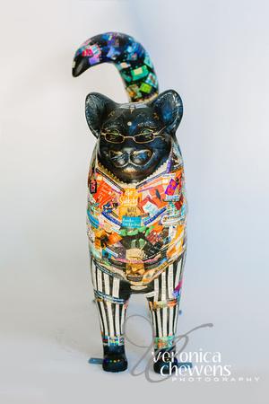 Veronica Chewens Photography: 2018 Catskill Cats &emdash; 23 Cat Tales