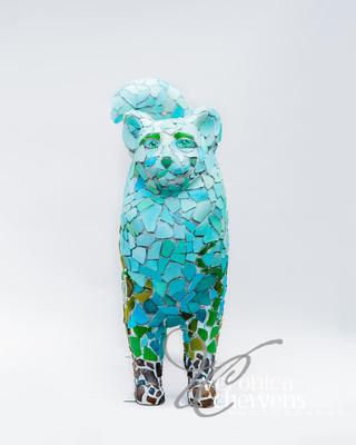 Veronica Chewens Photography: 2019 Cats &emdash; #2 Dutchmen's Beach Glass (2)