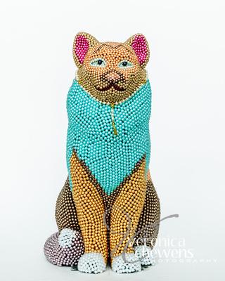 Veronica Chewens Photography: 2017 Catskill Cats &emdash; Purrls