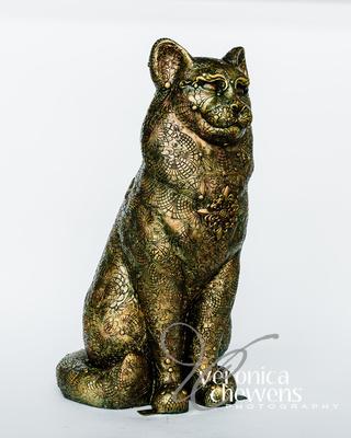 Veronica Chewens Photography: 2017 Catskill Cats &emdash; Oriana