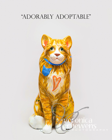 #6 HOCA Cats 2015-Adorably Adoptable copy